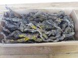 Fruithout-(Grape-wood)-Per-doos