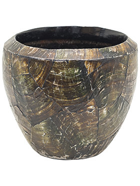 Oceana Cracked Pearl - Couple Black Brown Ø17
