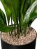 Vulkastrat korrels _
